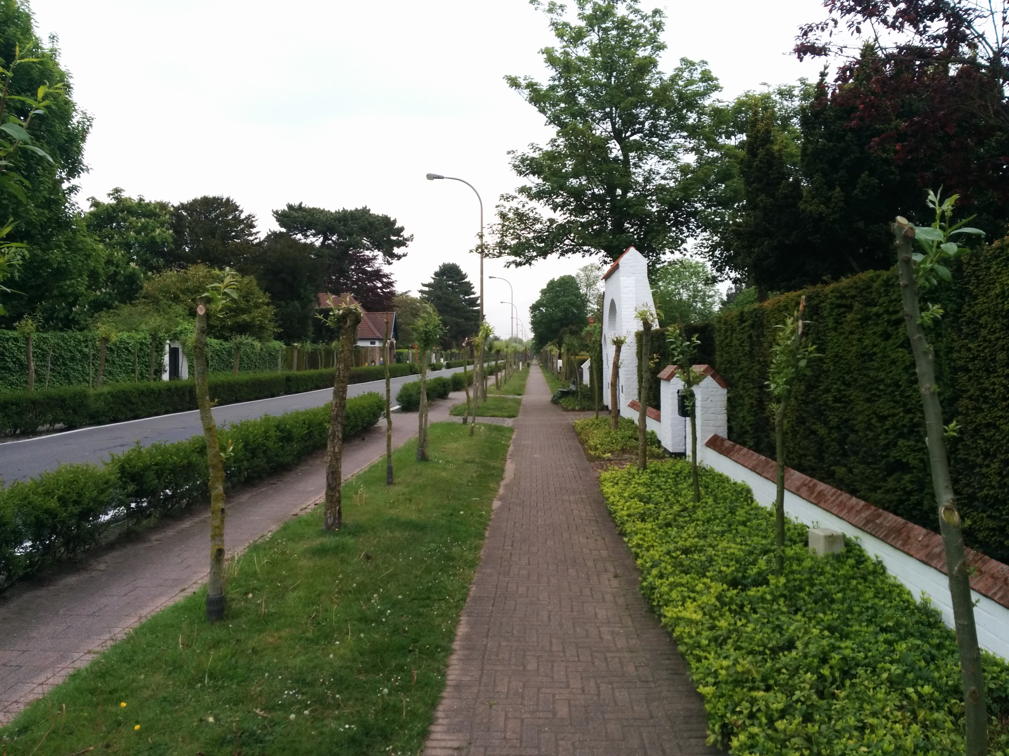 Charming-suburbs